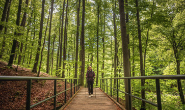 Two Days of Zagreb for Nature Lovers